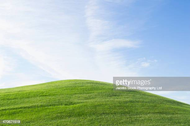 Rolling green hill under blue sky