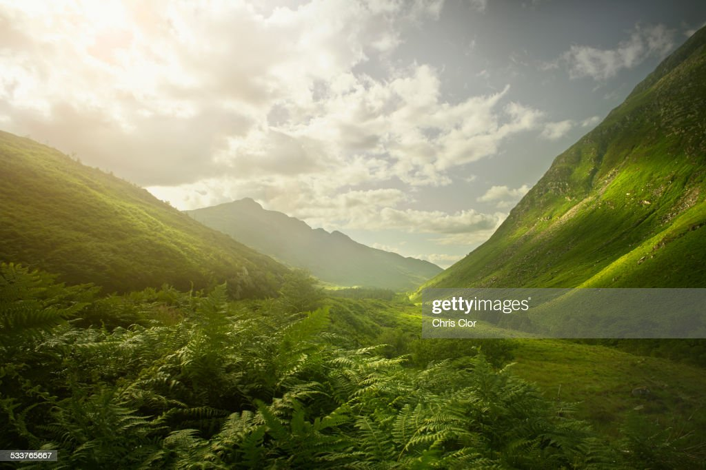 Rolling green hills in remote landscape