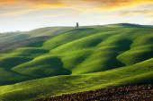 Rolling green hills in Tuscany