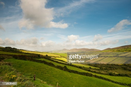 Rolling Green Hills : Stock Photo
