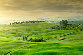 Rolling green hills with trees