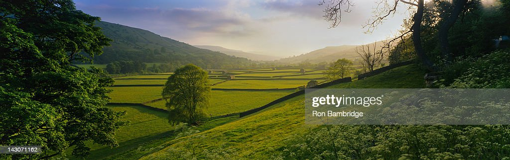 Rolling hills and pastures in rural landscape : Stock Photo