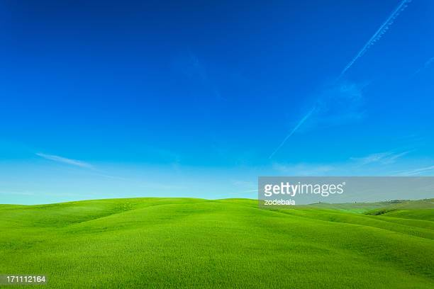 Rolling Hills Landscape in Tuscany, Val d'Orcia, Italy