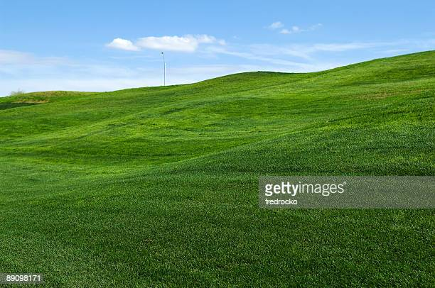 Rolling hills of green grass on lawn