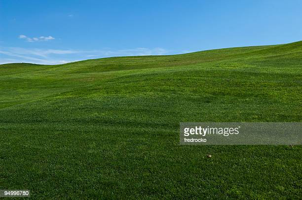 Rolling Hills of Green Grass or Lawn