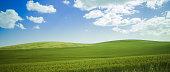 Landscape of green grassy hills in Western Australian farm land.