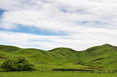 green rolling hills with a cloudscape and rural fence