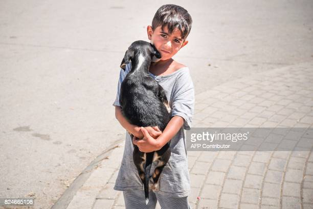 A Roma child holds a dog on a street in the Roma neighborhood in the town of Mitrovica on July 7 2017 The Roma 'are not treated like humans' Florim...