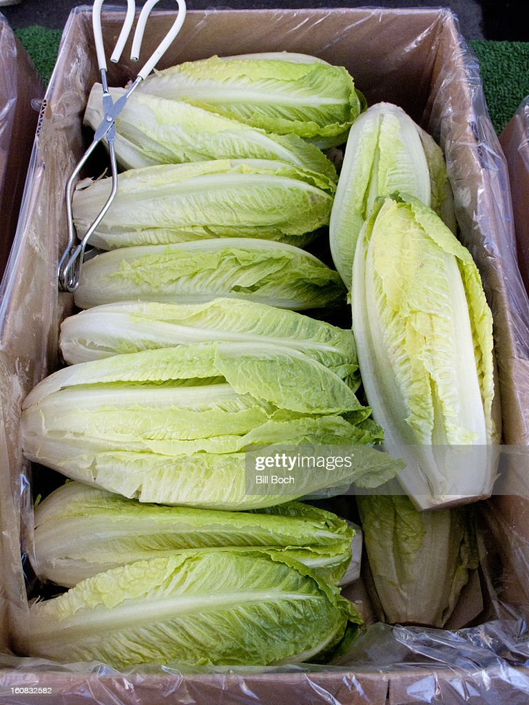 Romaine lettuce at a farmers market : Stock Photo