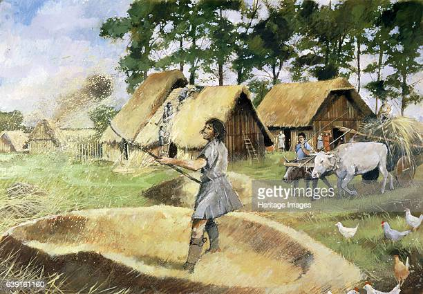 Roman farming c3rd century Rural life outside the walls of Silchester Reconstruction drawing Silchester was originally the centre of the Iron Age...