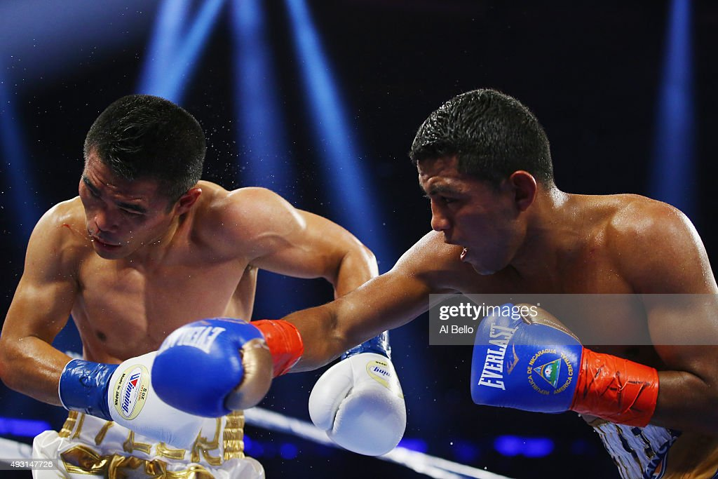 Roman Gonzalez punches <a gi-track='captionPersonalityLinkClicked' href=/galleries/search?phrase=Brian+Viloria&family=editorial&specificpeople=850361 ng-click='$event.stopPropagation()'>Brian Viloria</a> during their WBC Flyweight Title fight at Madison Square Garden on October 17, 2015 in New York City.