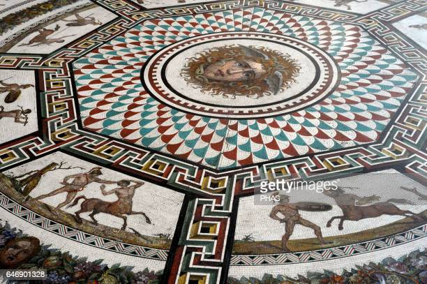 Roman mosaic replica of the Baths of Ocriculum Small Hermitage Pavilion Room The State Hermitage Museum Saint Petersburg Russia