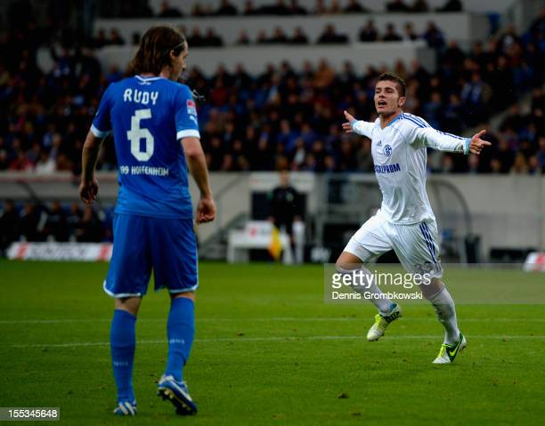 Roman Neustaedter of Schalke celebrates after scoring his team's first goal during the Bundesliga match between TSG 1899 Hoffenheim and FC Schalke 04...