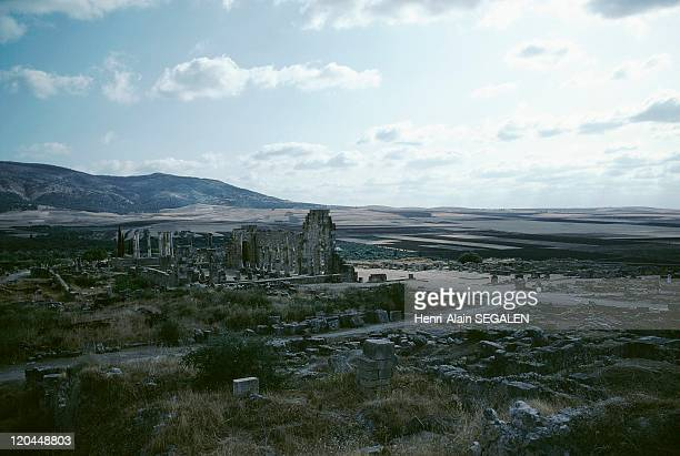 Roman Ruins of Volubilis in Volubilis Morocco