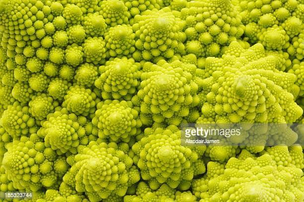 Romanesco Brócolos close-up