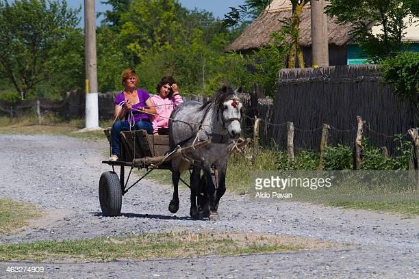 Romania, Danube Delta, Letea
