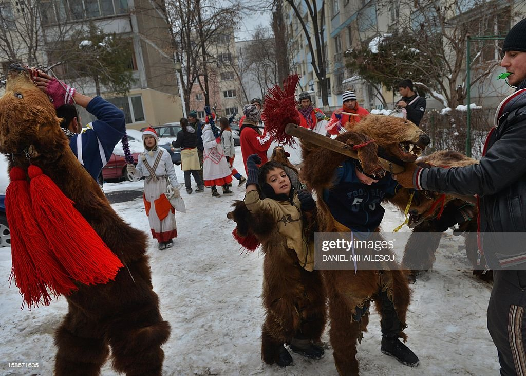 Romanian children wearing real bear skins coming from the Bacau region (some 340 km northeast from Bucharest) perform the bears' dance, an ancient tradition before Christmas celebration, in Bucharest, December 23, 2012. Such ceremonies are still popular in the Balkans and Romania, especially during the days from Christmas Eve to Epiphany. Originally, they were ceremonies in connection with periodic return of the dead, with people wearing all sorts of masks and behaving like animals such as horses, goats or bears. It is believed that bears banish demons from houses and farmyards and wish a happy year. AFP PHOTO / DANIEL MIHAILESCU