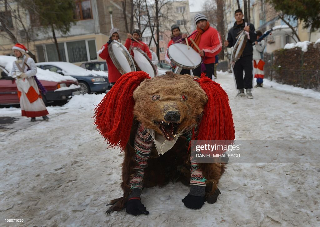 Romanian children wearing real bear skins coming from the Bacau region (some 340 km northeast from Bucharest) perform the bears' dance, an ancient tradition before Christmas celebration, in Bucharest, December 23, 2012. Such ceremonies are still popular in the Balkans and Romania, especially during the days from Christmas Eve to Epiphany. Originally, they were ceremonies in connection with periodic return of the dead, with people wearing all sorts of masks and behaving like animals such as horses, goats or bears. It is believed that bears banish demons from houses and farmyards and wish a happy year.