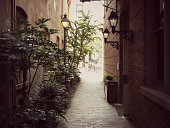Charming Charleston alleyway with gas lamps and plants.