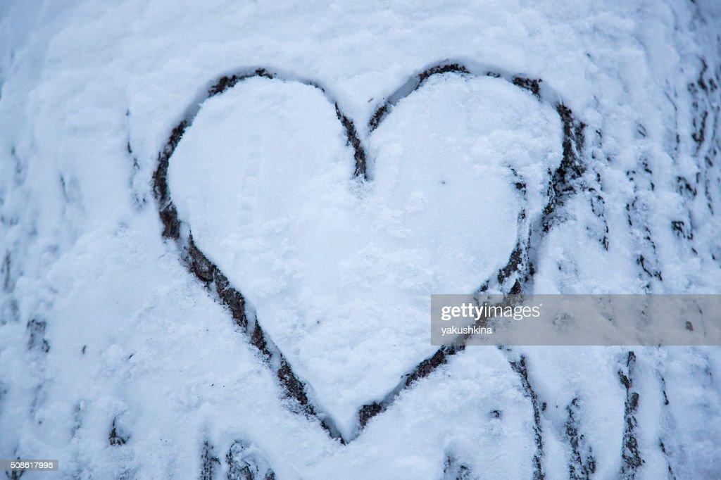 Romantic snow heart on the tree : Stock Photo