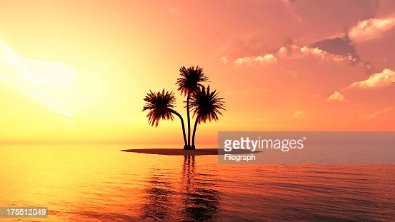 Romantic summer beach sunset