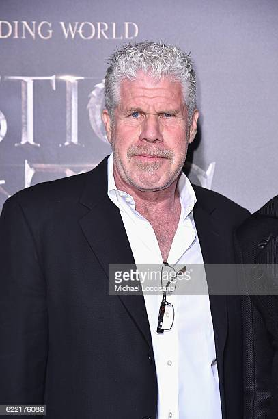 Ron Pearlman attends the 'Fantastic Beasts And Where To Find Them' World Premiere at Alice Tully Hall Lincoln Center on November 10 2016 in New York...