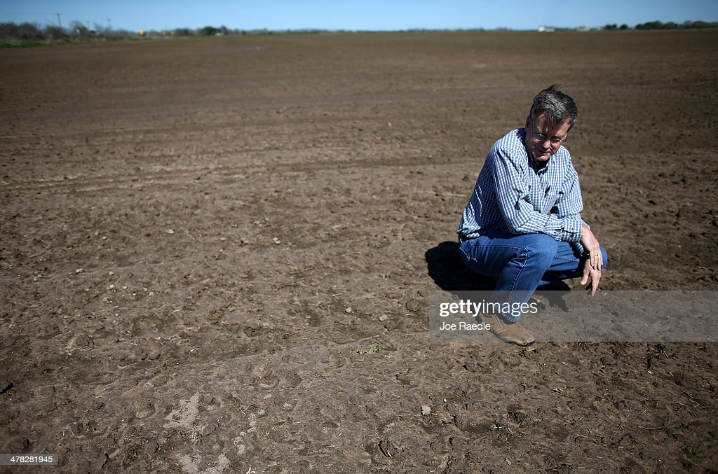 Ronald Gertson, a fourth generation rice farmer, looks over his rice field that may not be planted this year due to a severe water shortage on March 12, 2014 in Lissie, Texas. Recently the Texas Commission on Environmental Quality agreed to cut off water deliveries to most rice farmers in the Lower Colorado River Basin for the third straight year as the lakes in central Texas are only 38 percent full.