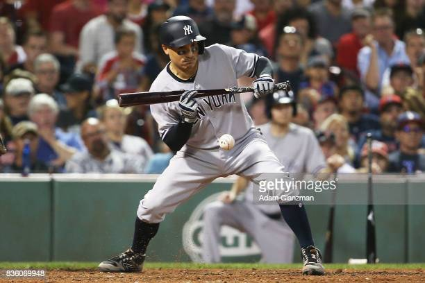 Ronald Torreyes of the New York Yankees bunts in the eighth inning of a game against the Boston Red Sox at Fenway Park on August 19 2017 in Boston...