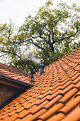 Roof of house with steaming stovepipe under autumn tree.