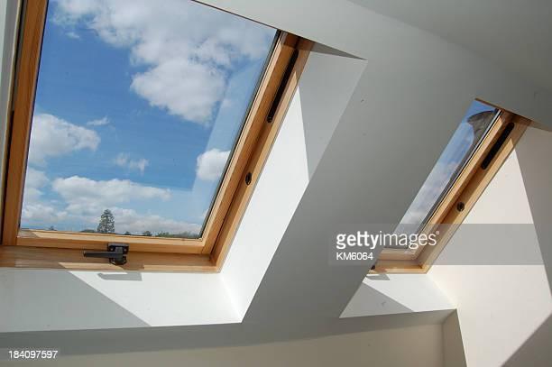 Fenêtres de toit skylight