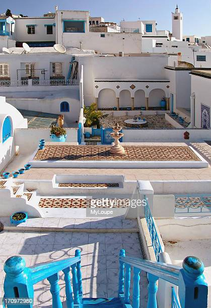 Roof top garden of a traditional Arabian house at the artist village of Sidi Bou Said in Tunisia