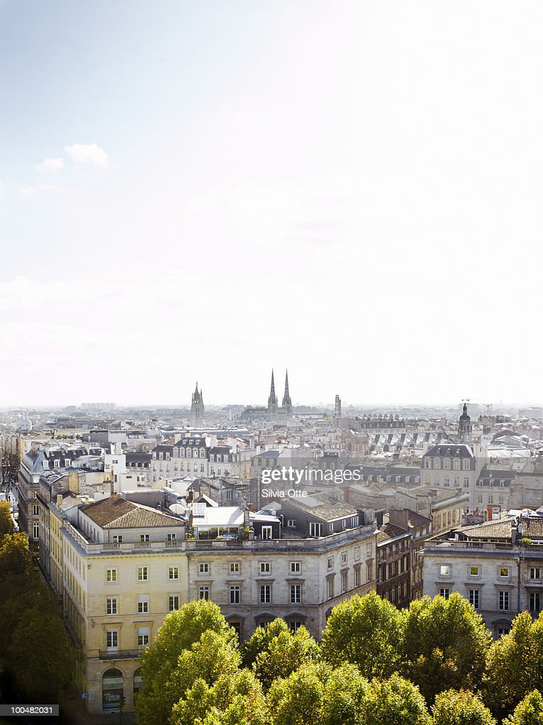 roof tops in Bordeaux with city view