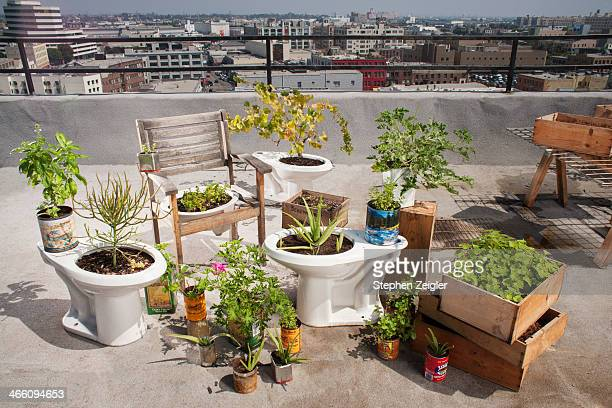 A rooftop garden that utilizes recycled materials