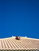 Rooftop in Schiesser,  Okinawa Prefecture,  Japan