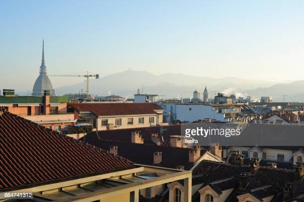 Rooftops of Turin