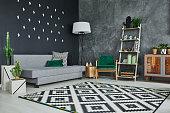 Grey room with blackboard wall, cactus and sofa