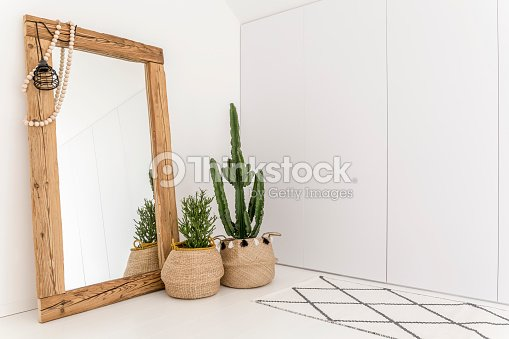 Room with mirror and cactus : Stock Photo
