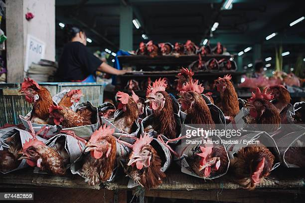 Roosters For Sale On Rustic Market Stall