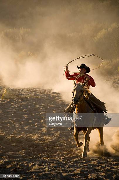 Roping cowboy on running horse/kicking up dust-close up
