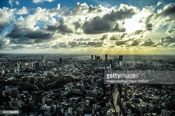 Roppongi Dori and Shibuya Skyline