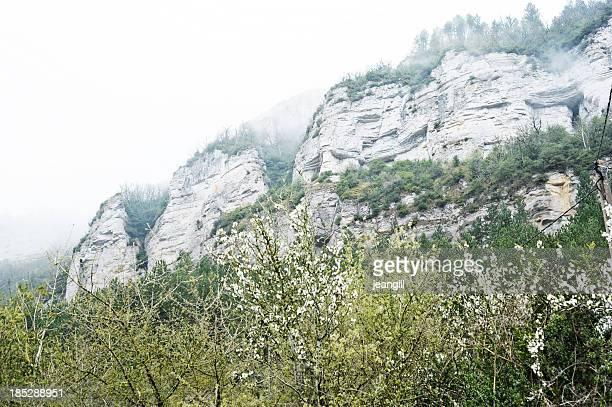 Roquefort limestone cliffs in mist, France