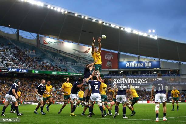 Rory Arnold of the Wallabies takes a lineout ball during the International Test match between the Australian Wallabies and Scotland at Allianz...