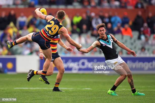 Rory Laird of the Crows and Aidyn Johnson of the Power compete for the ball during the round 20 AFL match between the Adelaide Crows and the Port...