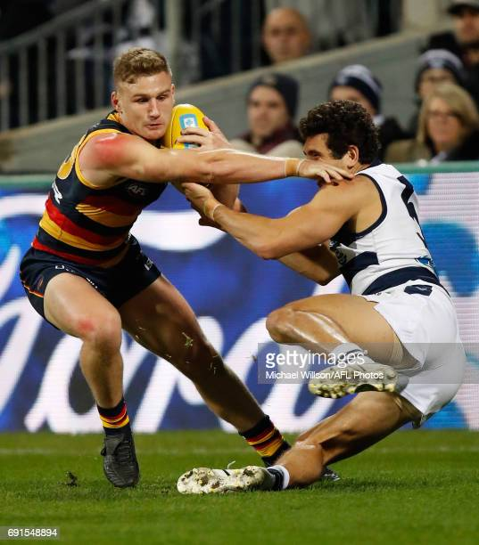 Rory Laird of the Crows fends off Nakia Cockatoo of the Cats during the 2017 AFL round 11 match between the Geelong Cats and the Adelaide Crows at...