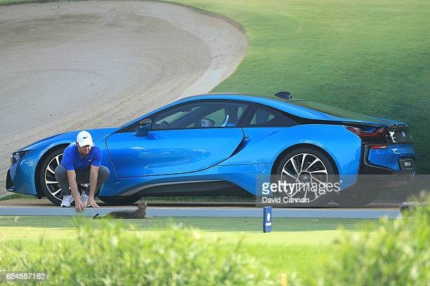Rory McIlroy of Northern Ireland reacts to a cat on the 17th tee during day four of the DP World Tour Championship at Jumeirah Golf Estates on...