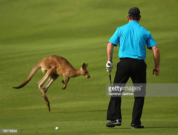 Rory Sabbatini of South Africa scares a kangaroo off the 12th fairway prior to playing his stroke during the first round of the Australian PGA...