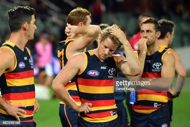 Rory Sloane of the Crows looks on dejected after the round eight AFL match between the Adelaide Crows and the Melbourne Demons at Adelaide Oval on...