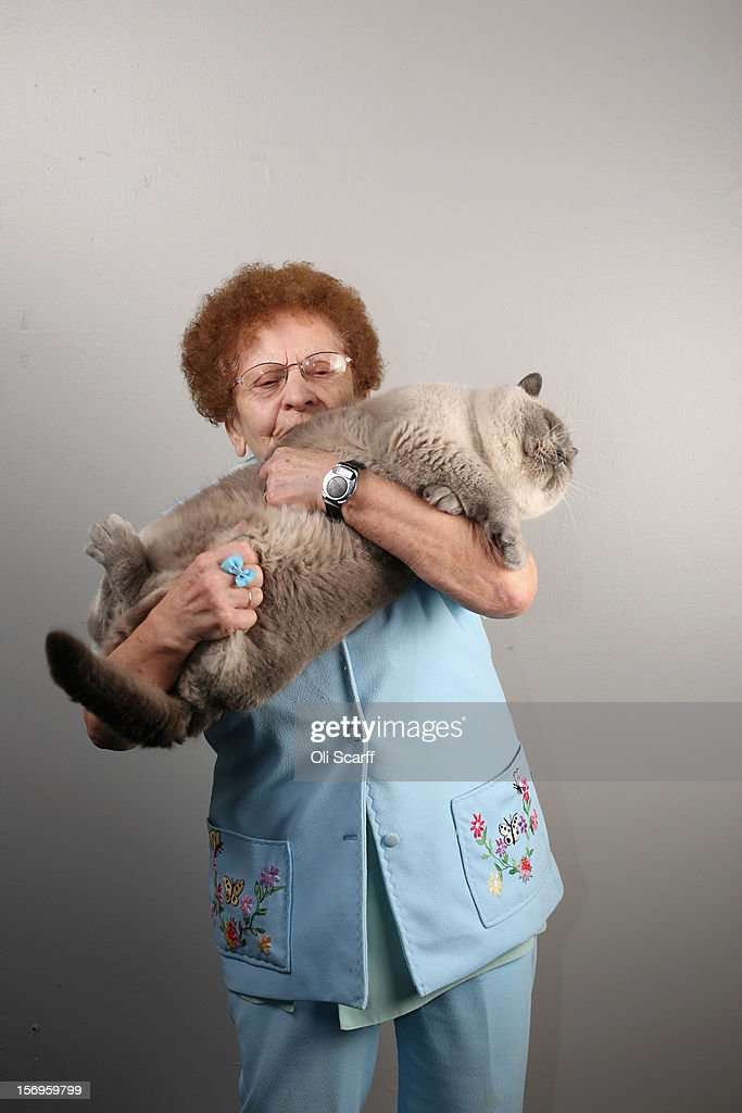 Rosa Wardle poses for a photograph with her cat named 'Blue Snowman' after being exhibited at the Governing Council of the Cat Fancy's 'Supreme Championship Cat Show' held in the NEC on November 24, 2012 in Birmingham, England. The one-day Supreme Cat Show is one of the largest cat fancy competitions in Europe with over one thousand cats being exhibited. Exhibitors aim to have their cat named as the show's 'Supreme Exhibit' from the winners of the individual categories of: Persian, Semi-Longhair, British, Foreign, Burmese, Oriental, Siamese.