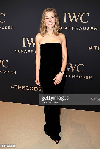 Rosamund Pike attends the IWC Schaffhausen 'Decoding the Beauty of Time' Gala Dinner during the launch of the Da Vinci Novelties from the Swiss...