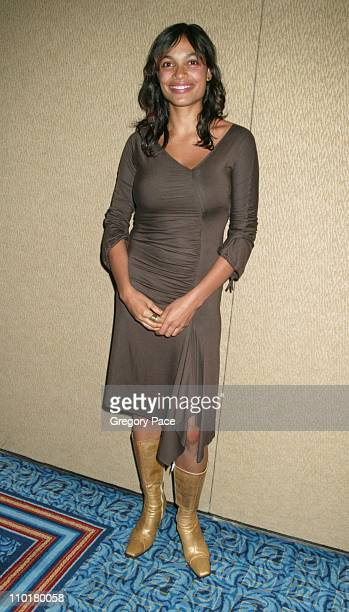Rosario Dawson during 14th Annual GLAAD Media Awards Dinner at Marriott MarquisGrand Ballroom in New York NY United States
